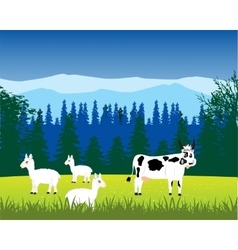Pets animals on nature vector image vector image