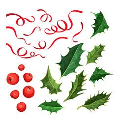Christmas holly leaves berries ribbon set vector