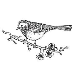Hand drawn ornate bird on sakura branch with vector image