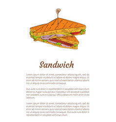 sandwich snack isolated color vector image