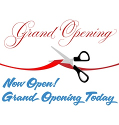 Grand Opening Background vector image