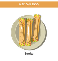 tasty burrito served on plate from mexican food vector image