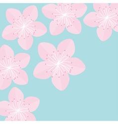 Sakura flowers Japan blooming cherry blossom Blue vector image