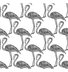 Seamless pattern with hand drawn flamingo birds in vector image vector image