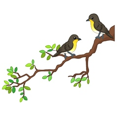 Two song birds on spring branch vector image vector image
