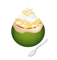Coconut Ice Cream with Jackfruits vector