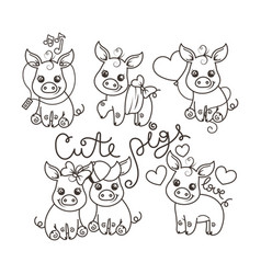 collection of cute cartoon pigs vector image