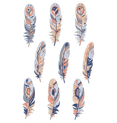Feathers decorative set hand drawn vector