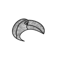 head of macaw birds logo design vector image