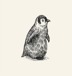 King or emperor penguin chick cute baby small vector