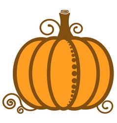 pumpkin orange image vegetable vector image