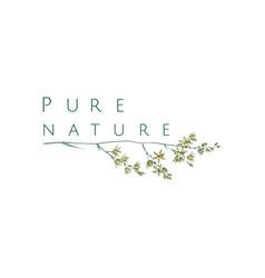 pure nature logo vector image