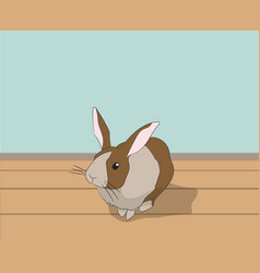 rabbit sitting in a room vector image