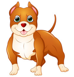 cute pitbull cartoon standing vector image