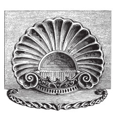 Engraving is in the style of a sea shell vintage vector