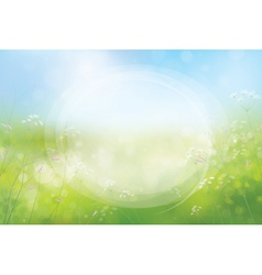 frame spring vector image