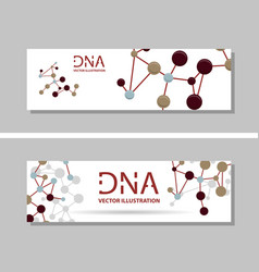 genetics testing science dna double spiral vector image