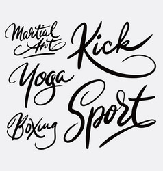 Martial art and sport hand written typography vector