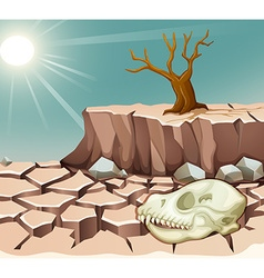 Natural disaster with drought vector image