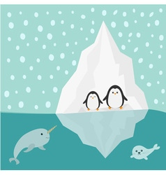 Penguin narwhal and seal family iceberg blue water vector