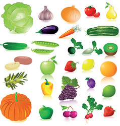 Vegetables and fruit vector