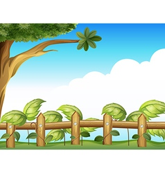 Vine plant in a fence vector