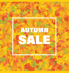 Autumn super sale banner with autumn leaves vector