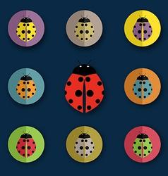 group beetles vector image