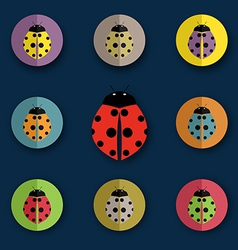 Group of beetles vector