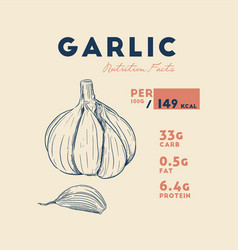 Health benefits of garlic nutrition facts hand vector