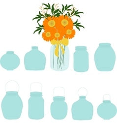 Jars set bouquet of herberas in jar vector image