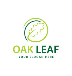 Oak leaf logo vector