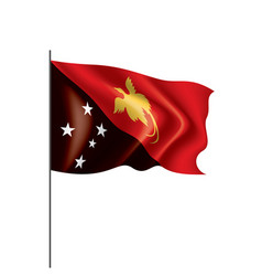 papua new guinea flag on a vector image