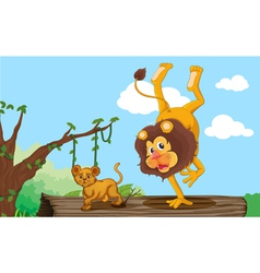 a lion and cub vector image vector image