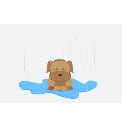 Homeless dog vector image