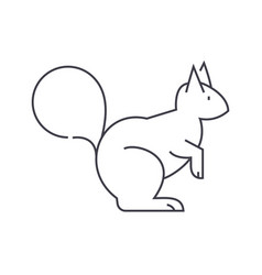 squirrel line icon sign on vector image