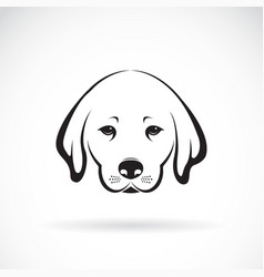 labrador dog head on white background pet animal vector image vector image