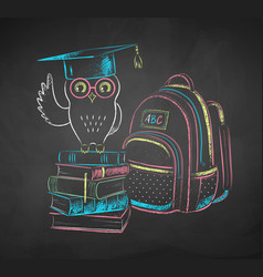 chalk drawn owl on books vector image
