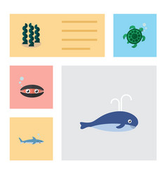 flat icon sea set of tortoise shark alga and vector image