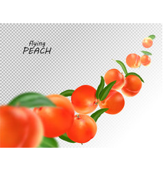 Flying peach realistic 3d vector