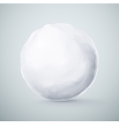 Isolated Snowball vector image