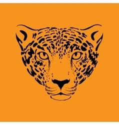 Leopard jaguar vector