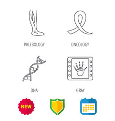 Phlebology dna and x-ray icons vector