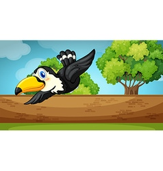 Scene with toucan flying over the wall vector image vector image