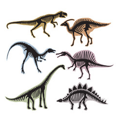 Skeleton of dinosaurs silhouette of vector