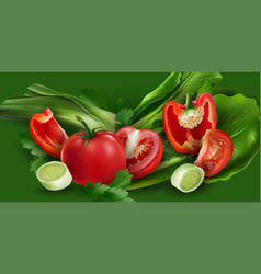 tomatoes pepper onions and lettuce vector image