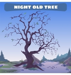Old dead tree at night vector image