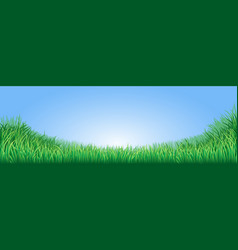 green grass field vector image