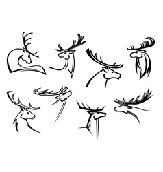 Proud profile of deer in outline style vector image