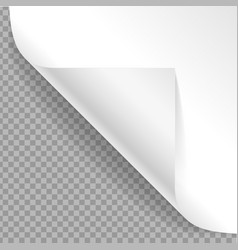 realistic detailed 3d curved corner vector image